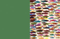fish Wheres Wally, The Odd Ones Out, Little Library, Big Picture, Collage Illustrations, This Book, Quilts, Fish, Illustrations