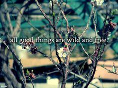 -Thoreau
