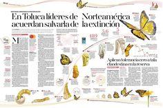 Season of information graphics - NEWSPAPER DESIGN