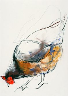 Chicken Drawing - Feeding Hen, Trasierra by Mark Adlington Chicken Drawing, Chicken Painting, Chicken Art, Chicken Animal, Rooster Painting, Rooster Art, Watercolor Bird, Watercolor Animals, Vogel Illustration