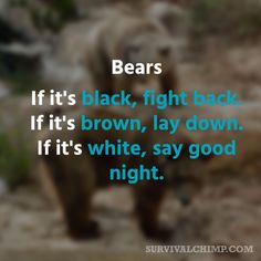 Bears: If it's black, fight back. If it's brown, lay down. If it's white, say goodnight.
