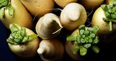 Daikon Is to Die For #0: 8d46e655d d dcc0fc80 interesting things to do neon yellow