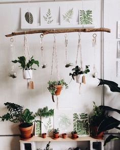 indoor hanging plants ideas to decorate your home 32 ~ mantulgan.me indoor hanging plants ideas to decorate your home 32 ~ mantulgan. Bedroom Plants Decor, Romantic Bedroom Decor, House Plants Decor, Plant Decor, Decor Room, Wall Decor, Bedroom Ideas, Diy Hanging Planter, Diy Planters