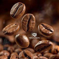 Puro aroma MIRANDA cafe gourmet ...
