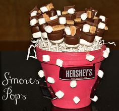 S'mores Triple Layer Cake, S'mores Cookies & S'mores Pops Bouquet  |  Hugs and Cookies XOXO