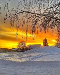 captain kimo winter photos 600 x 900 Winter Sunset, Winter Love, Winter Scenery, Image Nature, Winter Magic, Snow Scenes, Winter Beauty, Winter Pictures, Beautiful Sunrise