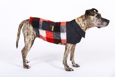 NEW! Dress your dog in style this winter with this hip 'Huck' Lumberjack coat by Berlin-based studio happystaffy.me.