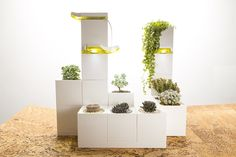 This Indoor Smart Garden Snaps Together Like LEGO Blocks