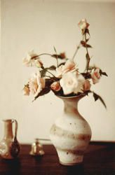 Photograph of a pot by Lucie Rie containing pink roses, c.1972