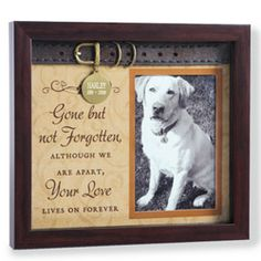 shadow box pet memorial google search - Dog Memorial Frame