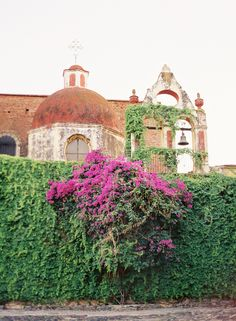 A Mexican Hacienda.  Looks like creeping fig and bouganvilla climbing the wall.  Love that!