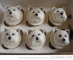 Daaamn those are awesome cupcakes