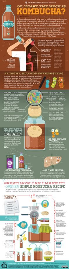 What are the benefits of drinking Kombucha? - What are the benefits of drinking Kombucha? Kombucha, a goopy slime in a bottle, is actually recognized and confirmed as one of the healthiest teas in the Kombucha Recipe, Kombucha Tea, Benefits Of Kombucha, Kombucha Probiotic, Kombucha Brewing, Probiotic Drinks, Healthy Drinks, Get Healthy, Healthy Recipes
