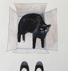 @aikogg cat in the box memories warehouse shop etsy