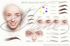 Brow Map designed special for my lovely students and clients. This Brow Guide helps for all eyebrows specialists! Available in two size and Designed by Sandra Martis Tweezing Eyebrows, Threading Eyebrows, Microblading Eyebrows, Eyebrow Makeup, Makeup Kit, Perfect Eyebrows, Skin Treatments, Makeup Collection, Best Makeup Products