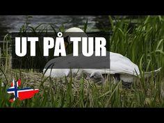 Диалоги для изучения норвежского языка: слова с русской транскрипцией - YouTube