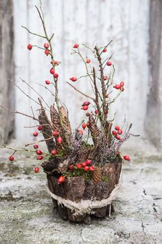 Dekorace z lesa? Šest tipů na to, co můžete vyrobit z větví, šišek a kůry - Proženy Christmas Tree Art, Christmas 2019, Christmas Home, Christmas Decorations, Diy Crafts For Gifts, Crafts For Kids, Rama Seca, Ideas Prácticas, Autumn Photography