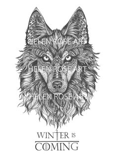 'Winter Wolf' illustration 'Winter is coming' Wolf drawing, zentagle. Dire wolf, House Stark, Game of thrones.