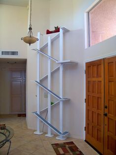 Amazing ceiling height cat tree. Attached to wall with carpeted ramps to reach the top. Variation of this (pretty tall!)  by door for high energy escape artists gets them up & above all to stop door dashing.