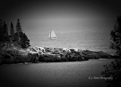 Photographed in Maine.  Copyright: L. Paton Photography 2014