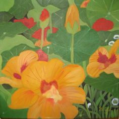 One of a set of oil painting of Nasturtiums Flower Prints, Flower Art, Horse Paintings, Sweet Peas, Beautiful Images, Painters, Plant Leaves, Pastel, Colours