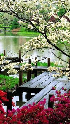 I like Pictures | expression-venusia: Park Bridges, Flower... | via Tumblr
