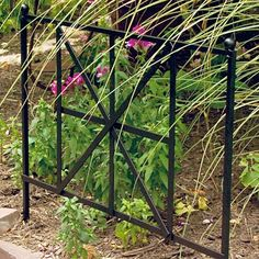 "Panacea British Cross Border Fence, 24""W, Pack of 12 at BestNest.com"