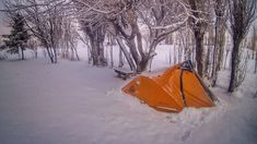 How to choose a good site to camp ~ ExpedEvac Expeditions Thorny Bushes, Weather Wind, Tent Pegs, Animal Tracks, Best Sites, Bouldering, South America, Shrubs, Fresh Water
