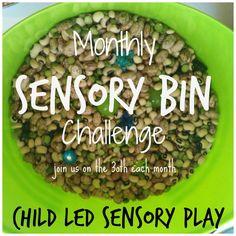 Monthly Child Led Sensory Bin Challenge: Explore, Observe & Play