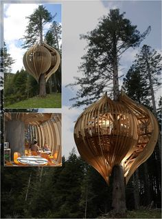 Yellow Tree House Restaurant, Auckland (Warkworth), New Zealand the style envelope: March 2011 Bamboo Architecture, Amazing Architecture, Interior Architecture, Architecture Details, Modern Tree House, Tree House Plans, Cool Tree Houses, Yellow Tree, Tree House Designs