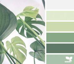 15 Ideas Kitchen Ideas Green Design Seeds For 2019 Nature Color Palette, Green Colour Palette, Green Colors, Colours, Palette Design, Vintage Colour Palette, Design Seeds, Green Design, Flora Design