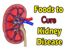 Diet for Stage 4 Chronic Kidney Failure:To Eat and To Avoid