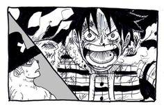 Monkey D Luffy Tony Tony Chopper Straw Hat Crew Pirates Mugiwaras One Piece