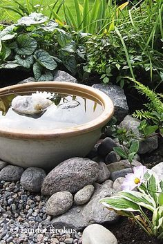 Container water gardens - awesome backyard ponds and water garden landscaping ideas 00025 – Container water gardens Ponds Backyard, Backyard Landscaping, Landscaping Ideas, Landscaping Borders, Pergola Garden, Garden Sofa, Garden Cottage, Backyard Ideas, Container Water Gardens
