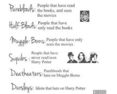 A rundown of the Potter fandom terminology for you. I'm a Pureblood, myself.