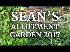 Sean's Allotment Garden 2017 The Movie Looking back over highlights of the past twelve months.  Blog http://ift.tt/2C9TbEd & http://seanjcameron.com  YouTube https://www.youtube.com/seanjamescameron  Instagram http://ift.tt/2nYix4X  Facebook Group http://ift.tt/2CdBP9R  Facebook Profile http://ift.tt/2nVBa9W  Twitter https://twitter.com/seanjcameron Support these videos by donating to the Patreon page http://ift.tt/2xwCq7d Thank you.  Sean James Cameron 2017 #gardening #allotment…