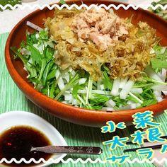 水菜と大根でさっぱりお手頃サラダ - 15件のもぐもぐ - 水菜と大根のサラダ by ikumiki