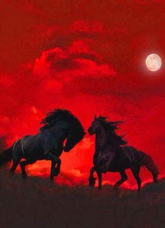 f1549408a0a0e2bd2399ee0e7ca00a16--horse-silhouette-red-background.jpg 600×827 pixels