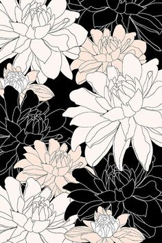 Black, white, and blush color way botanical floral illustration design by Alexandra Minkoff | www.alexandraminkoff.com | print design | patten | floral art |