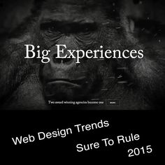 Web Trends Sure To Rule 2015!