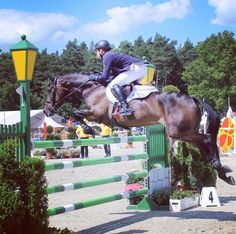 Horseware Rider Michael Jung jumping to finish in 2nd place with fischerRocana in the CCI4* at Luhmuhlen.