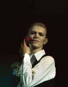 "David Bowie, ""Isolar 1"", Circa 76 🌹"