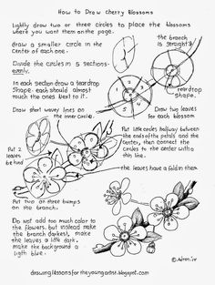 How To Draw Cherry Blossoms, Free Drawing Worksheet (How to Draw Worksheets for Young Artist) - waff life photos and shared Flower Drawing Tutorials, Art Tutorials, Drawing Flowers, Flower Drawings, Painting Flowers, Drawing Lessons, Drawing Techniques, Drawing Tips, Learn Drawing