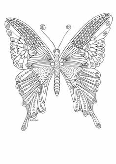 Detailed butterfly Coloring Pages Best Of Kittens and butterflies Coloring Book by Katerina Svozilova Animal Coloring Pages, Coloring Pages To Print, Coloring Book Pages, Printable Coloring Pages, Coloring Pages For Kids, Butterfly Pictures, Butterfly Art, Valentines Day Coloring Page, Butterfly Coloring Page