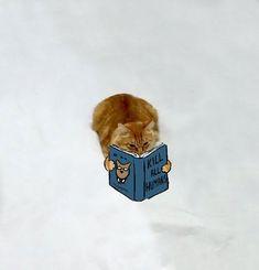 食って笑って寝ころんで • pleatedjeans: Internet Users Doodled on This Cat...
