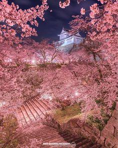 シェア&コメント大歓迎。norio_109さんの投稿作品です。東京カメラ部Instagram運営中です。Instagram投稿も紹介いたします!(T) 【東京カメラ部Instagram】 https://instagram.com/tokyocameraclub/ 【norio_109さん】 https://instagram.com/norio_109/ 【投稿頂いたURLはこちら】 https://www.instagram.com/p/BfQz5jdAqXA/ Instagramではご自身のタイムラインへの投稿される際にコメント欄に #tokyocameraclub #東京カメラ部 と入れていただければ東京カメラ部への投稿となります。