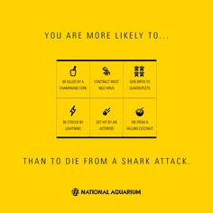 Just a little shark real talk for your Monday...