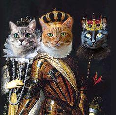 THREE Pet Portrait