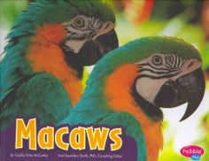 J 598.7 MCC. Simple text and full-color photos explain the habitat, range, life cycle, and behavior of macaws while emphasizing their bright colors