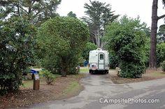 Morro Bay SP 005 - Morro Bay State Park Campsite Photos - campsitephotos.com